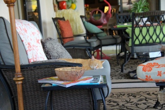 TC lounging on the lanai