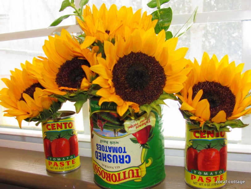 sunflowers on the kitchen sill
