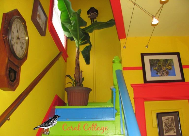 tree in stairwell..jpg