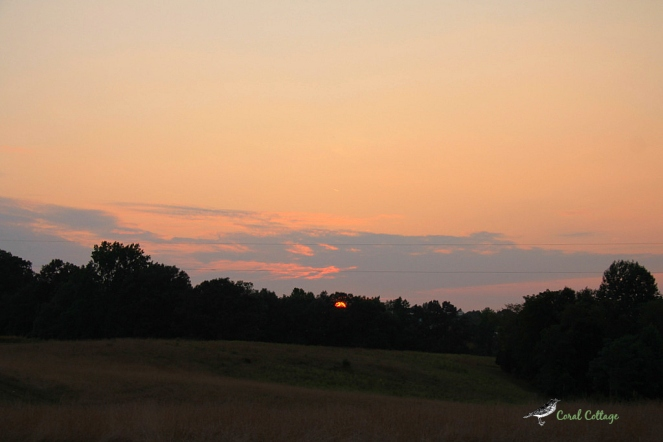 carysbrook sunset