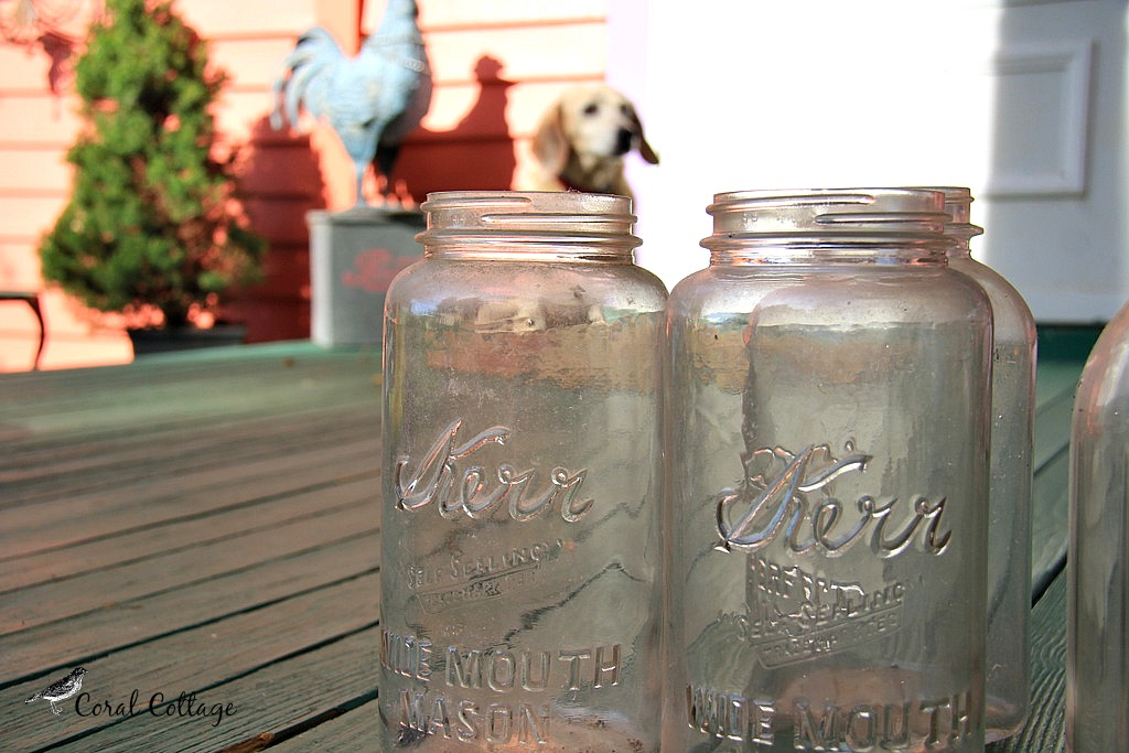 canning jars 2
