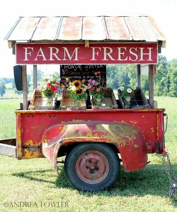 farmfresh stand