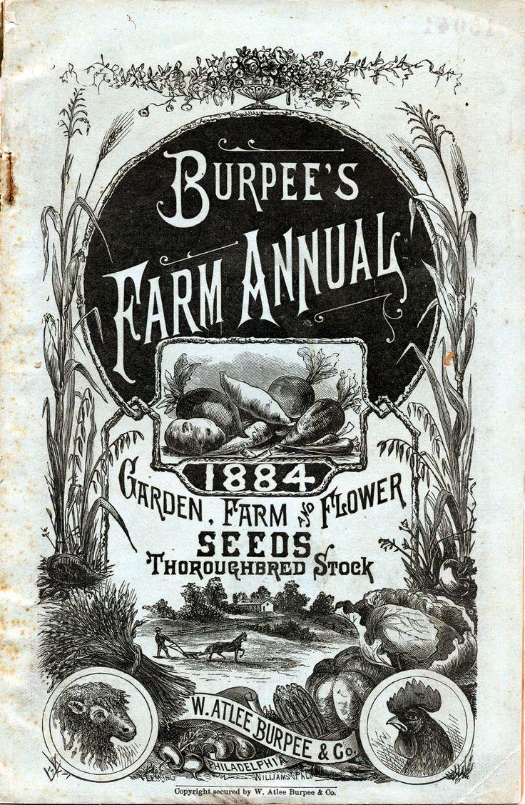 vintage burbee seeds 1884