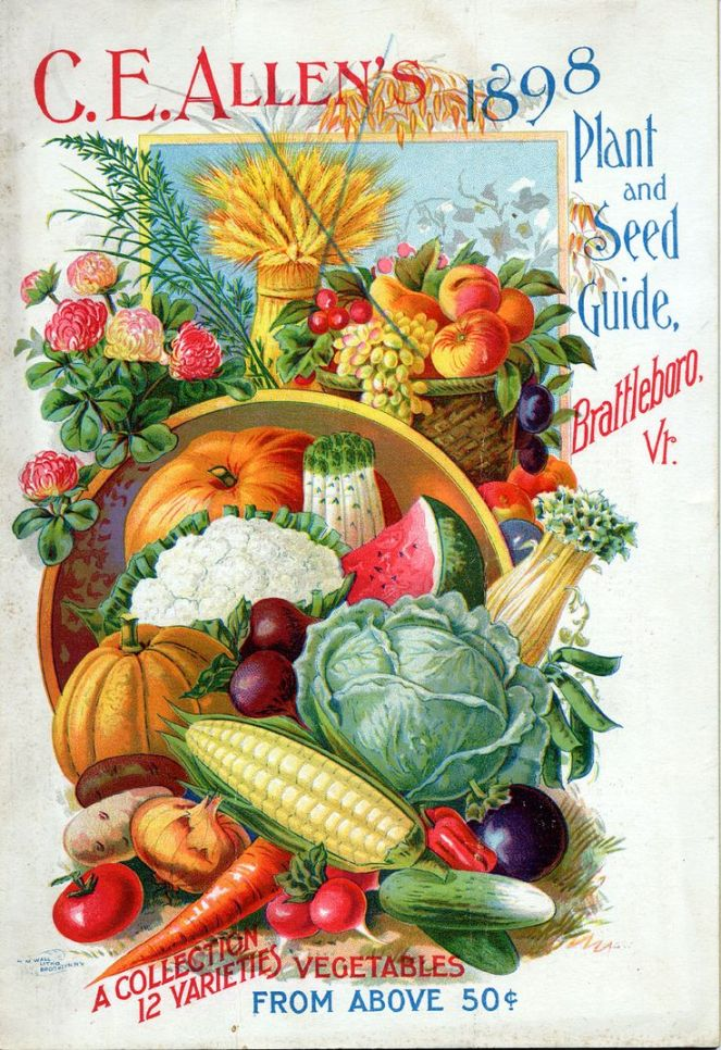 vintage seed catalog 1896