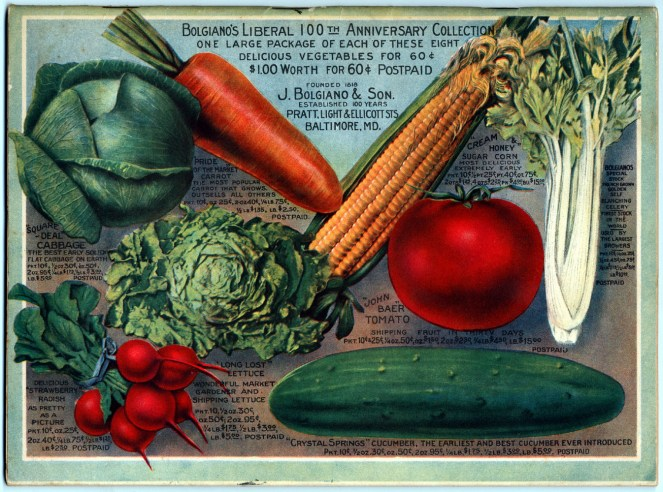 vintage seed catalog blogianos