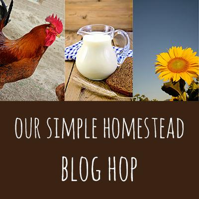 blog-hop 2