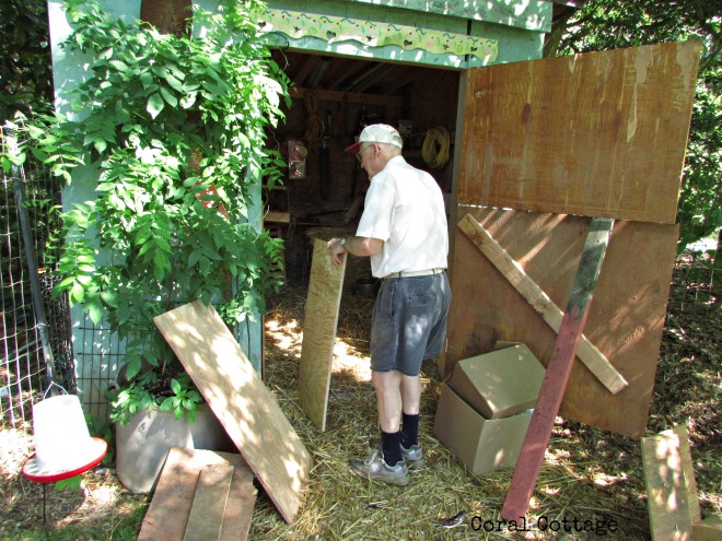 dad working on the coop
