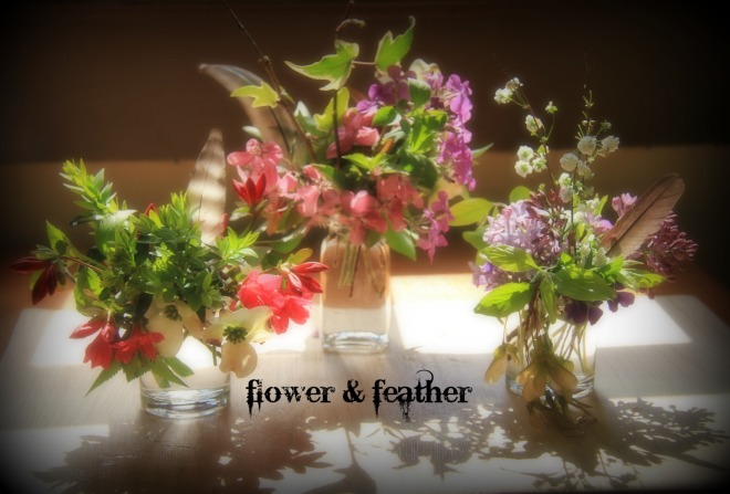 flower and feather group soften