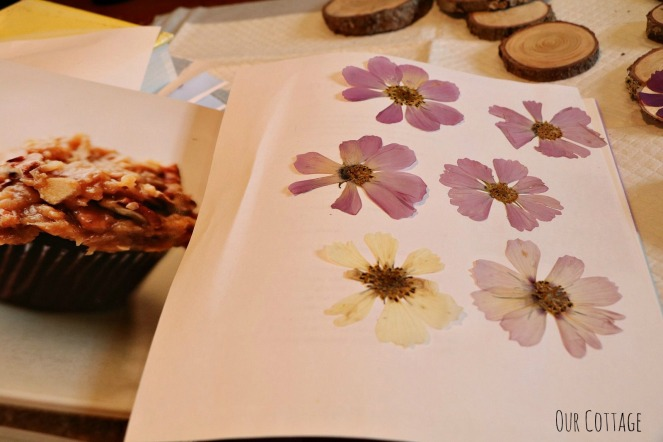 pressed-flowers-3