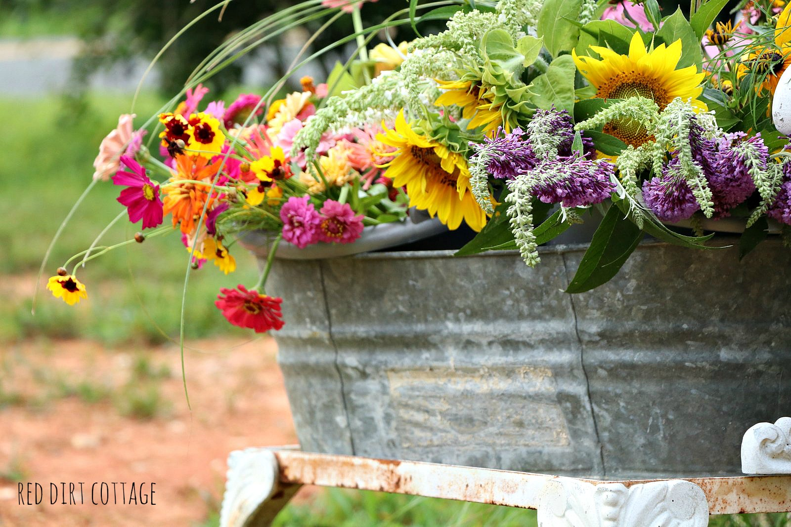Flowers In Galvanized Bucket Red Dirt Farm And Studio