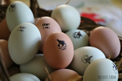 our stamped eggs