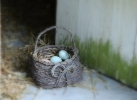 Basket of eggs photography by kcritzer photography