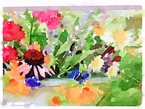Flowers for farm stand 1