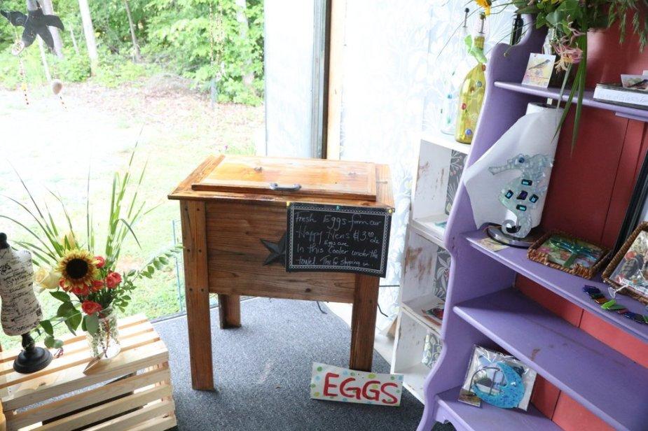 eggs in the Gypsy Dawn