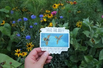 vinyl decal - save the bees